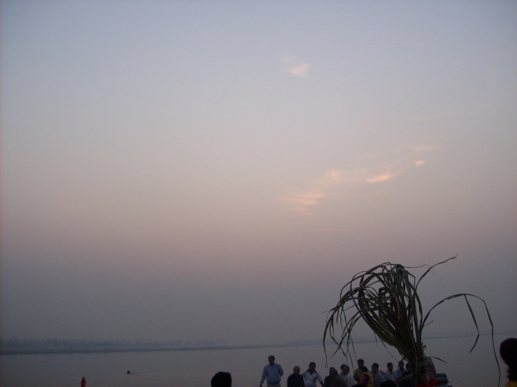 The sugarcane alongwith coconut form one of the most important fruits in the Chhath festival